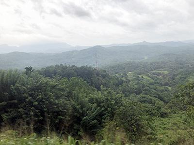 スリランカ鉄道車窓からの眺め